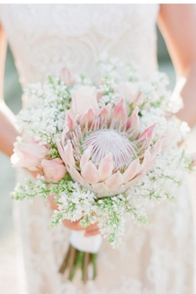 bloomin-delightful-5